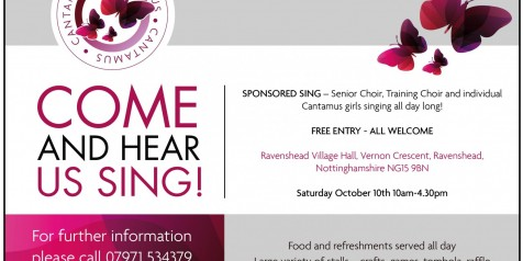 half page sponsored sing flyer